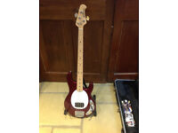 USA Ernie Ball Musicman Stingray bass active in tip top condition