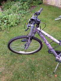 Girls Bike 17'' Frame Silver and Purple