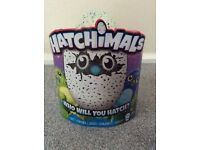 Hatchimal Draggles Green Egg Brand New In Box