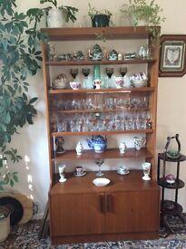 Display cabinet, has adjustable shelves, storage cupboard at bottom.