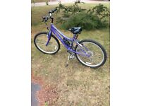 "Girls Raleigh Bicycle- 24"" wheels (14"" frame)"