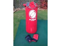 Olympus Boxing Punchbag Punchgloves and Ceiling Suspension Chain