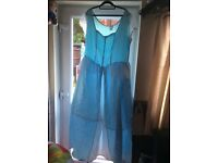Ladies adult Cinderella dress size 20-22 24 Halloween