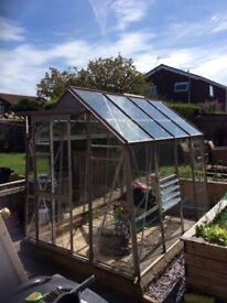 Metal framed greenhouse