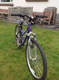 Raleigh 15' deep purple frame bicycle