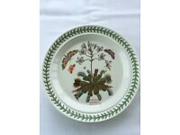 "Portmeirion dinner plates x 3 (10 1/2"") Helleborus Niger. Dionaea Muscipula/ Lonicera percivlymenum"