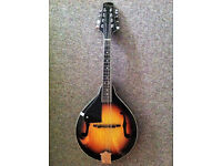 Stagg M20 Left Handed Mandolin - in very good condition