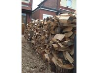 Cut Split logs ridiculous amount of enough for ten years burning