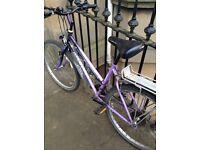Giant ladies bicycle, refurbishment project