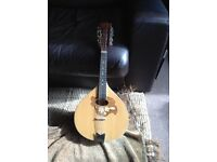 ACOUSTIC MANDOLIN UNWANTED GIFT HARDLY USED FULLY STRUNG VGC