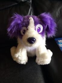 Russel dream sheep dog