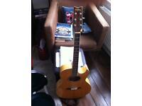 Washburn EA20 SDL Electro- Acoustic Guitar