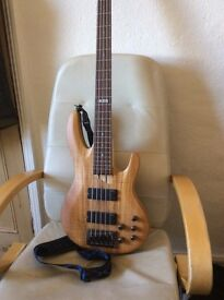 ESP B205SM five string electric bass guitar and Belcat 35w bass amplifier