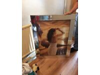 Picture in mirrored frame