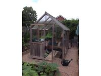 Timber framed greenhouse 6'x8'. Buyer to dismantle.
