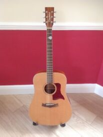 Tanglewood Sundance TW150P Acoustic Guitar