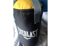 Everlast punch bag