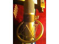 SE Electronics ICIS tube mic