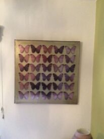 Square box style purple Butterfly picture for sale £10