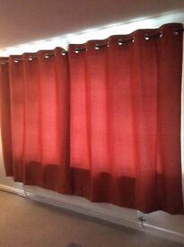 Next Ginger Eyelet curtains.