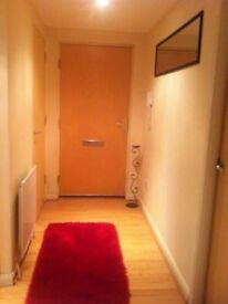 Dbl bedroom in a lovely, modern Southside flat (5 mins to City Centre)