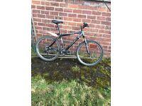 Trek 4300 bike