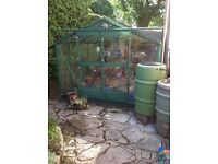 Metal Greenhouse 12ft x 8ft