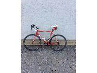 Fuji men's road bike
