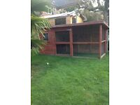 Rabbit hutch/chicken coop with run