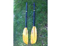 Kayak Paddle, Werner
