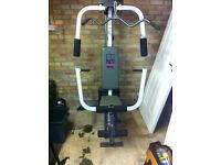 Weider Sparring System Multi Gym