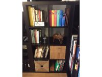 Ikea Expidit shelving unit