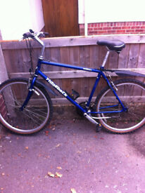 Ridgeback Mountain Bike for sale