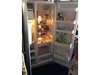 Fridge freezer American style