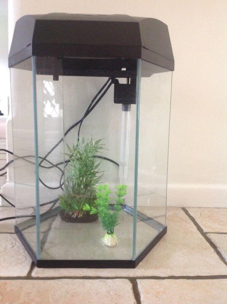 Hex Fish Tank.