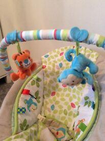Beautiful Comfort Baby Bouncer