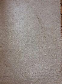 John Lewis Bliss carpet in Ash Blonde - end of roll