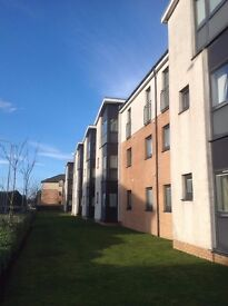 Rarely available privately - modern 2 bedroom flat in Shawfarm Gardens