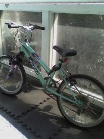 "Apollo Zealous Bike 16"" bicycle"