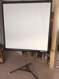 Rank Da-Lite fold down Projection Screen
