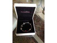 Pandora Silver Bracelet and 6 Silver Pandora Charms