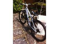 Barracuda mountain bike - suitable from 8 to teen