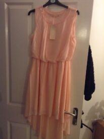 dresses BNWT