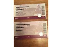 Cheltenham festival tickets