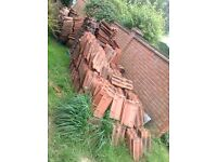 Approximately 1800 Norfolk roof tiles, taken off roof 50p/tile subject to number taken