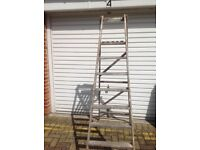 Tall Wooden Ladder. £15 ono