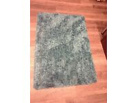 Shaggy teal rug