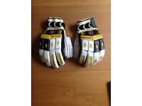 Boys Cricket Gloves