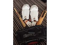 Boys Cricket bag, bat, spring stumps, gloves and chin pads