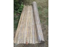 Bamboo/cane fence/screen